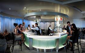 celebrity-martini-ice-bar
